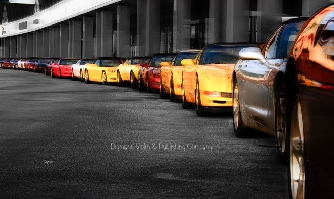 The Corvettes